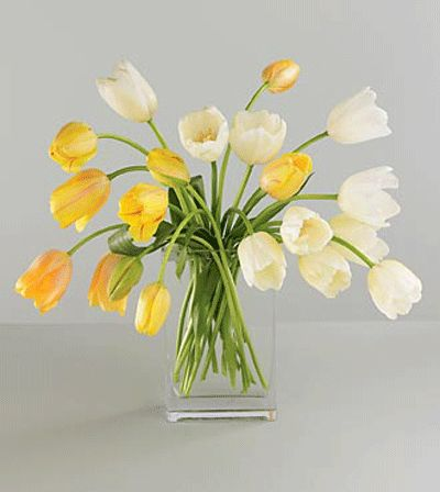 Vera Wang™ Spring Fling French Tulip Bouquet