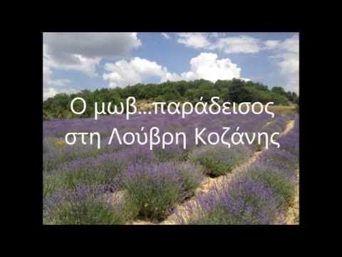 Συνταγή για απολέπιση | Αιθέριο έλαιο λεβάντα