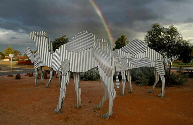 Tin Statues the size of Camels! A 2 hour drive south of Kalgoorlie Boulder, nestled on the main roundabout of Norseman, are some very cleverly constructed corrugated iron camels. As tall as the average human being, these camel statues command your attention - and are a tribute to the early camel trains that carried freight to and from the town.