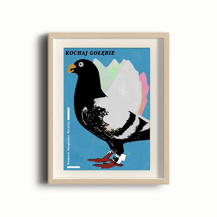 Plakat - Gołąb