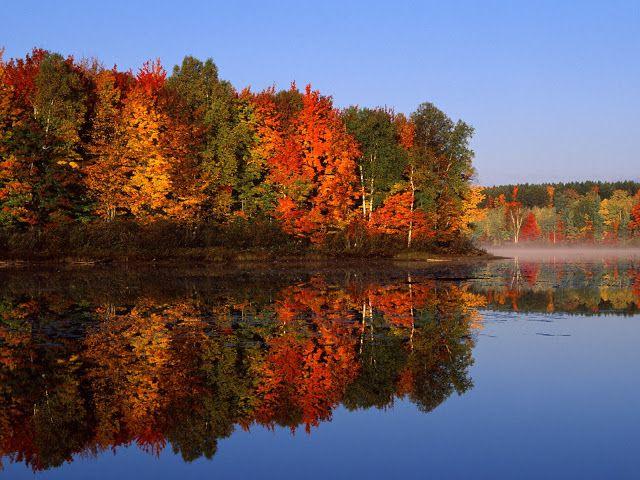 Herfst landschap met meer en gekleurde bomen