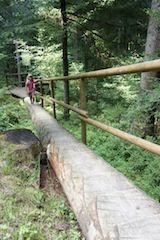 Wo geht´s hier lang? Die Schnitzeljagd im Wald fordert die Kinder.  Foto (c) kinderoutdoor.de