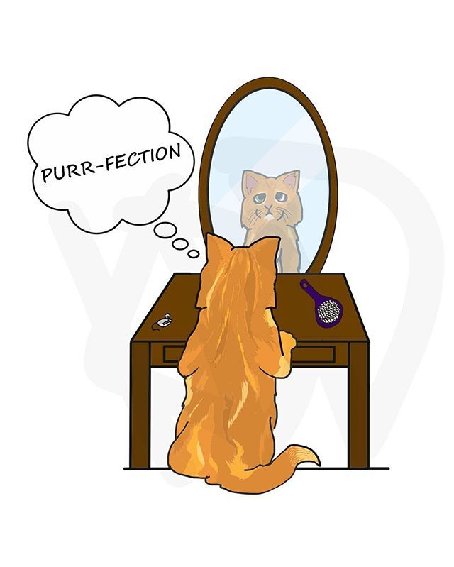 Purr-fection. #cat #purrfection #funny #art #doodle #kddoesdoodles