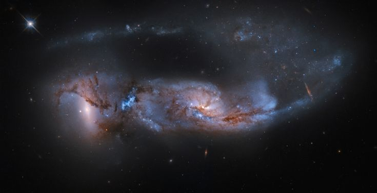 From planet Earth, we see this strongly distorted pair of galaxies, cataloged as Arp 81, as they were only about 100 million years after their close encounter. The havoc wreaked by their mutual gravitational interaction during the encounter is detailed in this color composite showing twisted streams of gas and dust, a chaos of massive star formation, and a tidal tail stretching for 200 thousand light-years or so as it sweeps behind the cosmic wreckage.