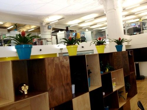Office Plant Hire and Plant rental services : The Best selection of the Stylish Planters. Indoor and Outdoor Plant Hire Solutions for your Office or Business in Sydney. | paul1pph