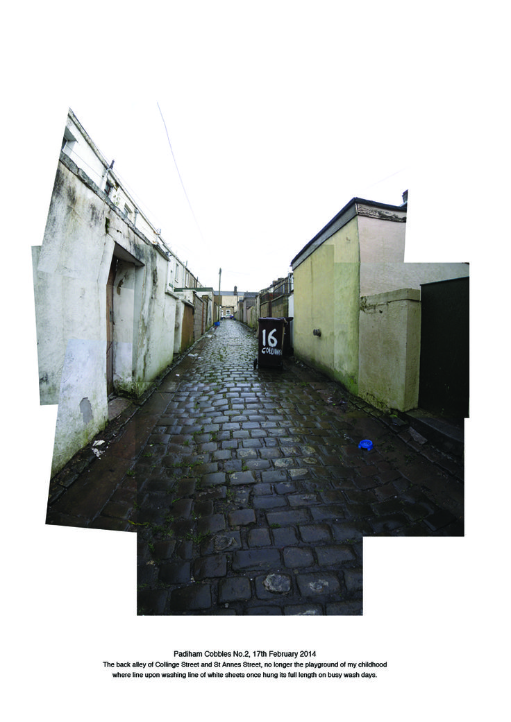 Cobbled back alley, Padiham, Lancashire_02