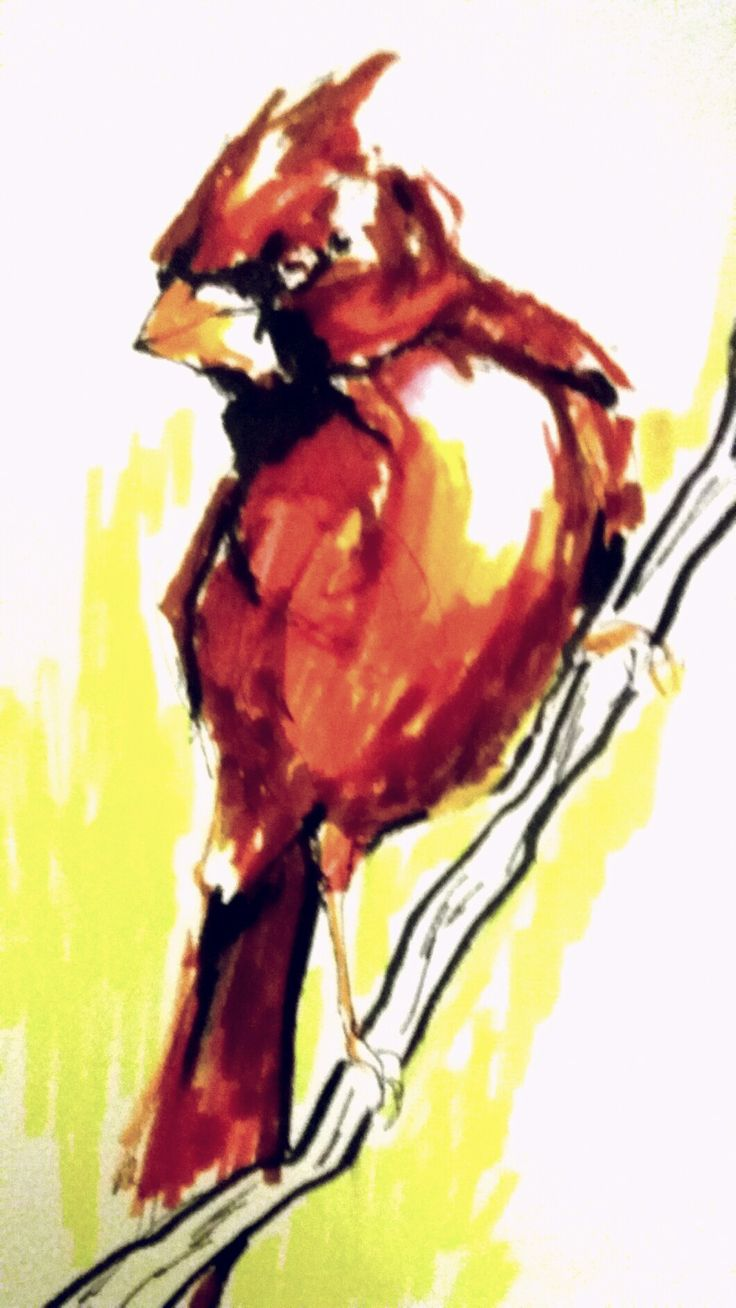 Bird by ecolines coloure