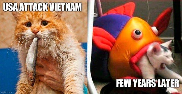 Usa Vs Vietnam Historymemes Vietnam History Memes Memes