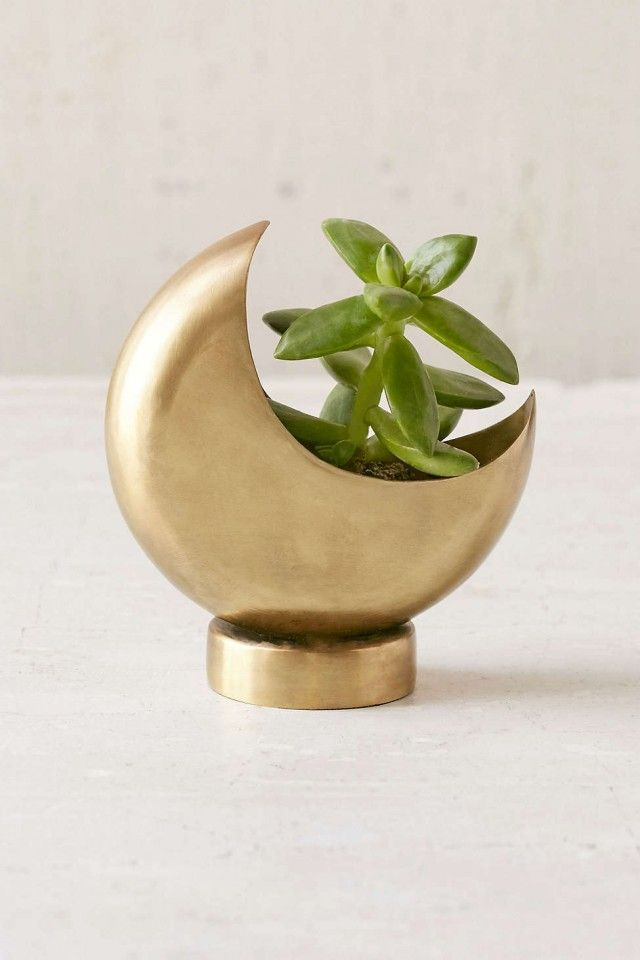 LOVE - this tiny little moon planter is going on my wish list.