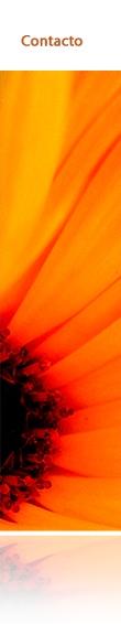 florerias en el df | florerias df | floreria | envio de flores | enviar flores