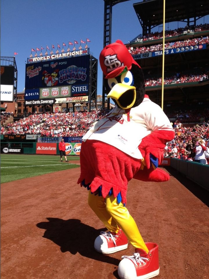 Fredbird, St. Louis Cardinals mascot.