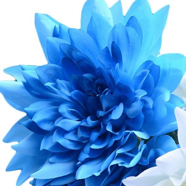 10 Seeds Blue Dahlia Seeds Blue Dahlia Flower Seeds Dahlia