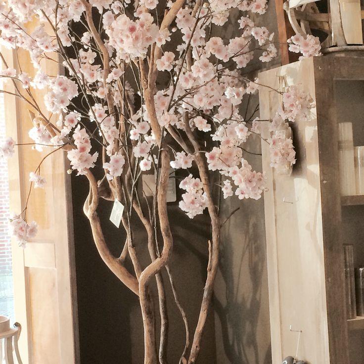 Bloesemboom op echte houten stam! Leverbaar in verschillende kleuren!