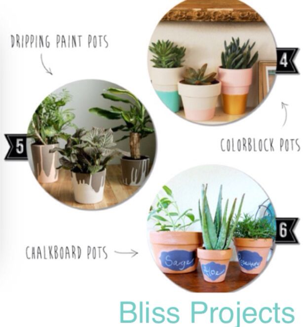 4-6, more ideas for diy terracotta pots. Use as gifts or create a design that suits you. Perfect present for kids, adults, teenagers, pretty much anyone. #blissprojects #terracotta #chalkboard #lifeandcolour #herbs #potplants #kitchendecor #gardening #diy #gifts #giftsforkids #flowers #flowerdecor #personalise #geometrics #spots #watersucculents #creative