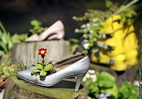 If the garden shoe fits, plant it