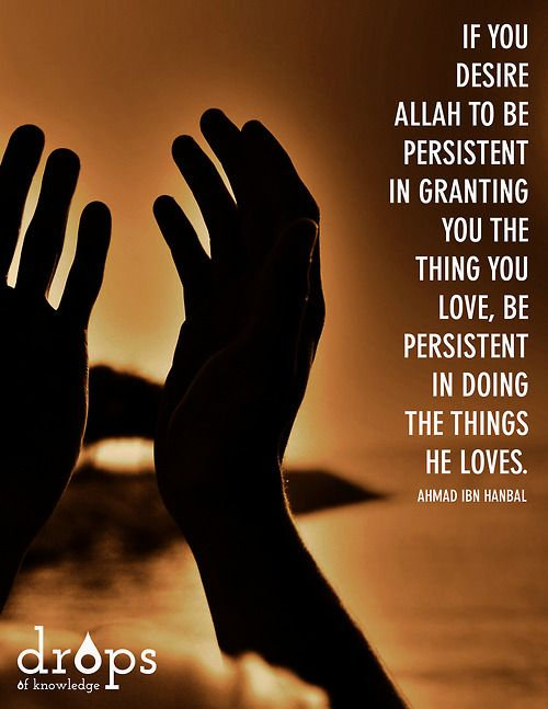 If you desire Allah to be persistent in granting you the thing you love, be persistent in doing the things he loves.