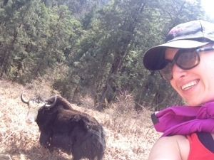 The yak and me in Bhutan: check the pics from the trip on First Time Foreigner.