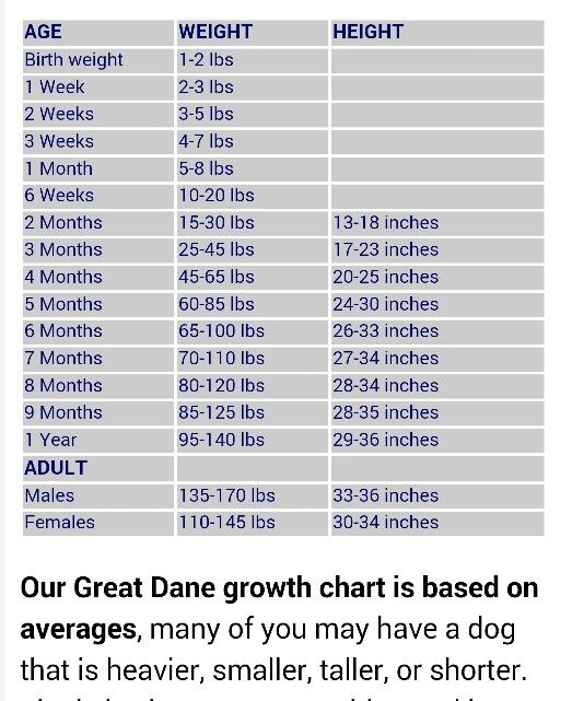 Great Danes Female Weight Chart Creativehobbyore