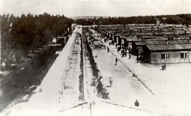 Jew Detector: 380 Best Images About Remembering The Holocaust On