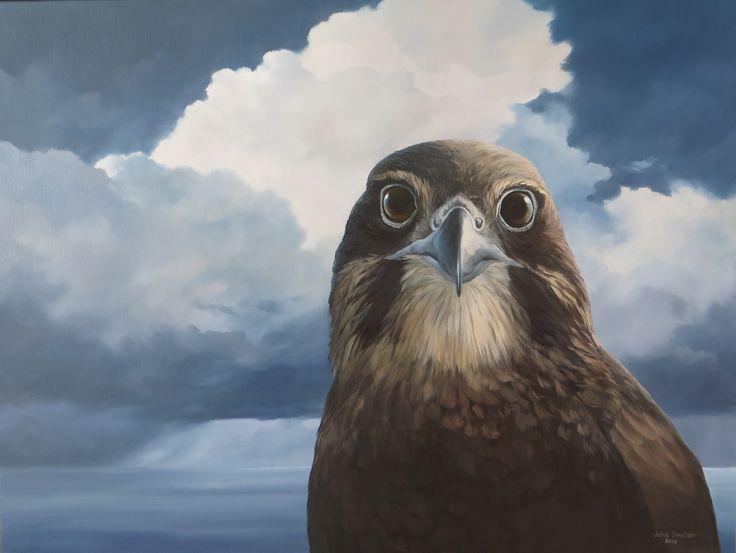 Karearea NZ Falcon  Oil on canvas Jane Sinclair