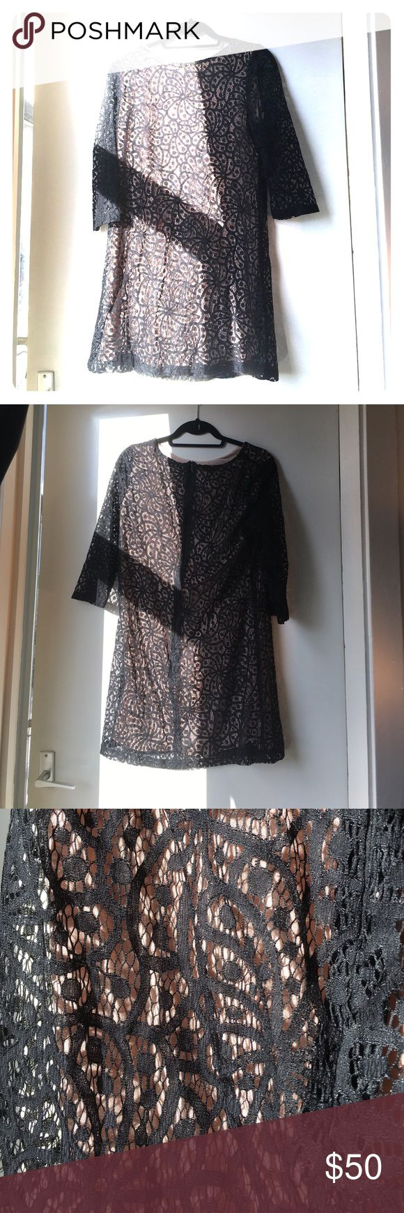 Mango Suit Lace Overly Dress Great condition - cute sleeves Mango Dresses Long Sleeve