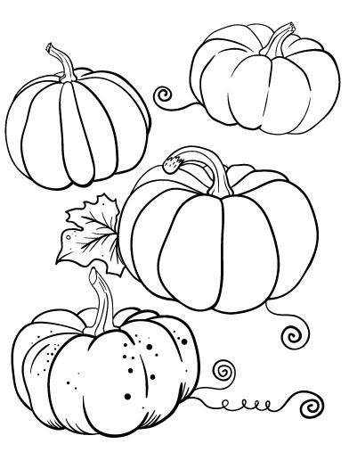 Printable pumpkin coloring page. Free PDF download at http://coloringcafe.com/coloring-pages/pumpkin/