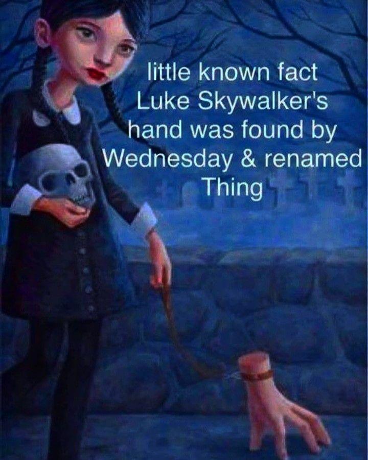 Hahaha Wednesday Humor Literally And Ironically Wednesday Wednesdayaddams Literally Irony Ironic Funny Wednesday Humor Tuesday Humor Thursday Humor