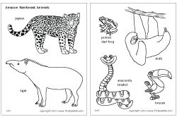Great coloring pages or cutouts for habitat studies lower grades