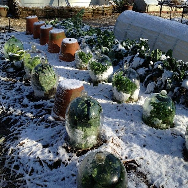 colonial gardens after a little snow by donaldmckelvey via instagram - Vegetable Garden Ideas New England