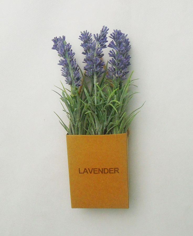 lavendar in hanging paper bag