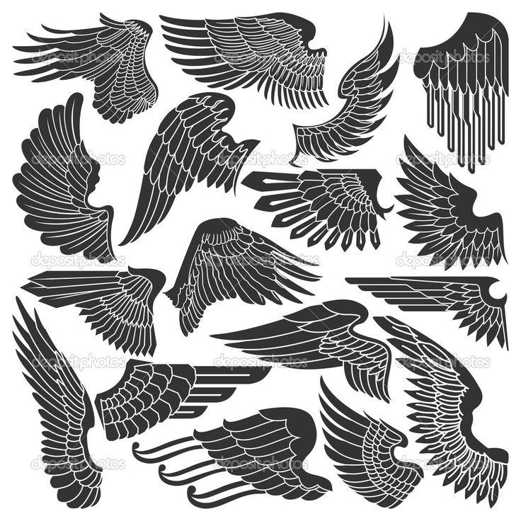 conjunto de desenhos de asas - Ilustração Stock: 13354976