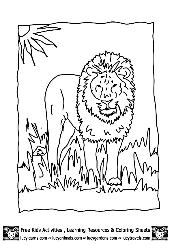 Lion Coloring Page Lion Coloring Pages Free Lion Coloring