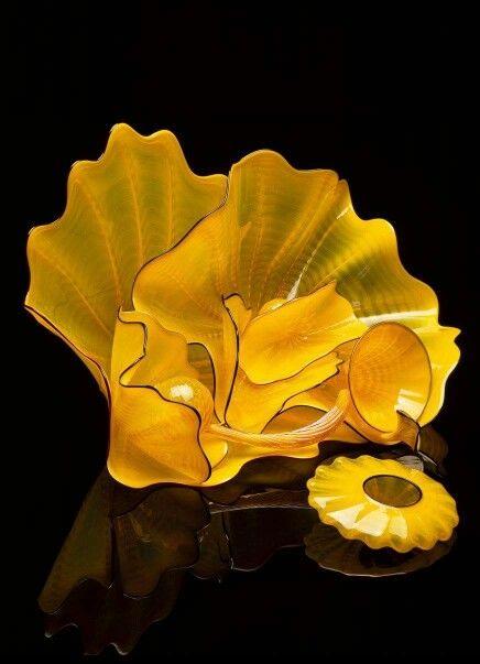 Forsythia yellow version set