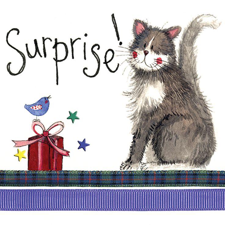 Details about Alex Clark Suprise Birthday Cat Greeting