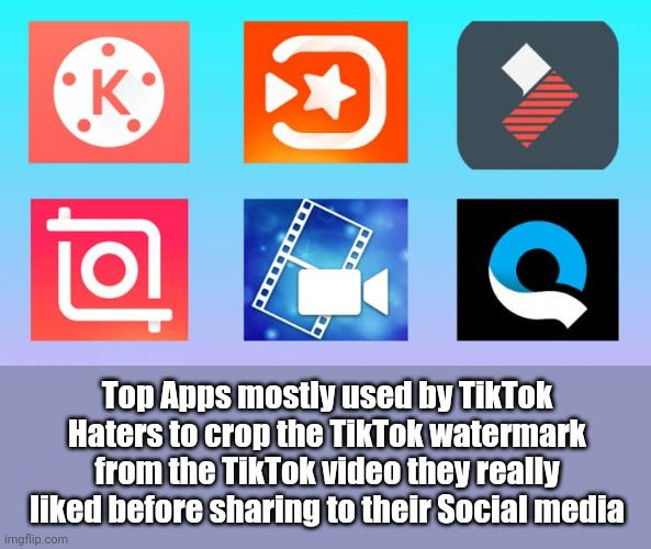 Tiktok Haters Problems In 2020 Haters Social Media Memes