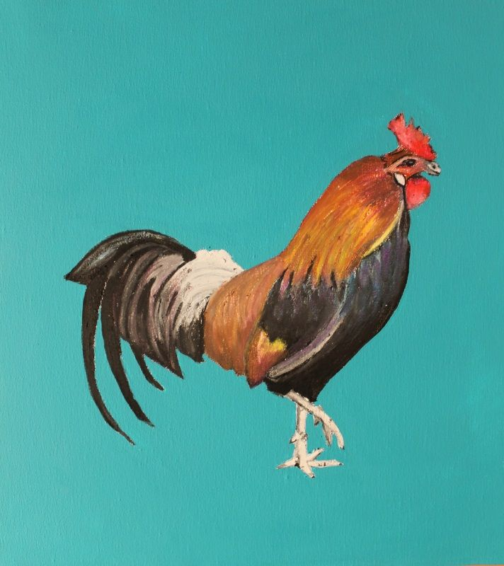 Rooster series Oil pastels/acrylic on canvas  2014 Limited prints available