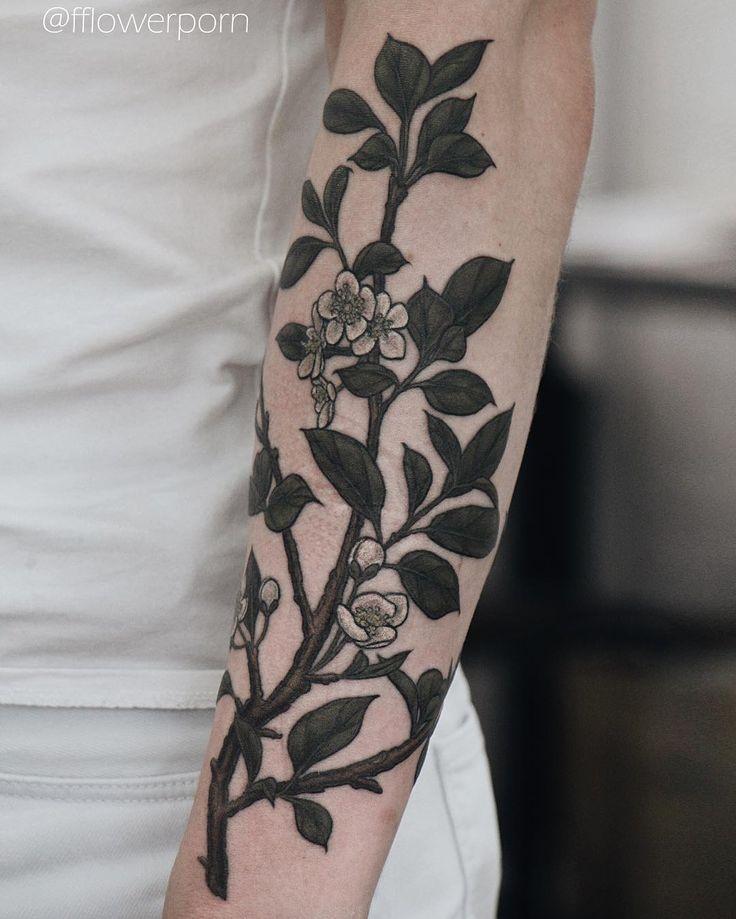 Another view of this branch #tattoo #tattoos #ink #inked #tattooed #tattooist #design #flower #flowers #plants #botanical #tattooistartmagazine #tatrussia #tattoodo #toptattooartists #thebesttattooartists #tattoorevuemag #tattoscute #tattoo_artwork #tattoo_worldwide_online #equilattera