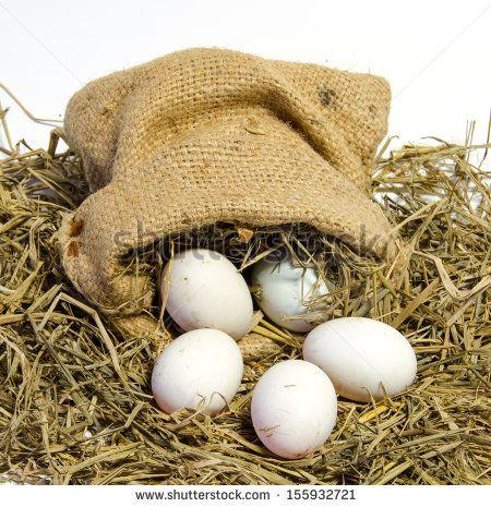 Eggs outside on straw sacks.