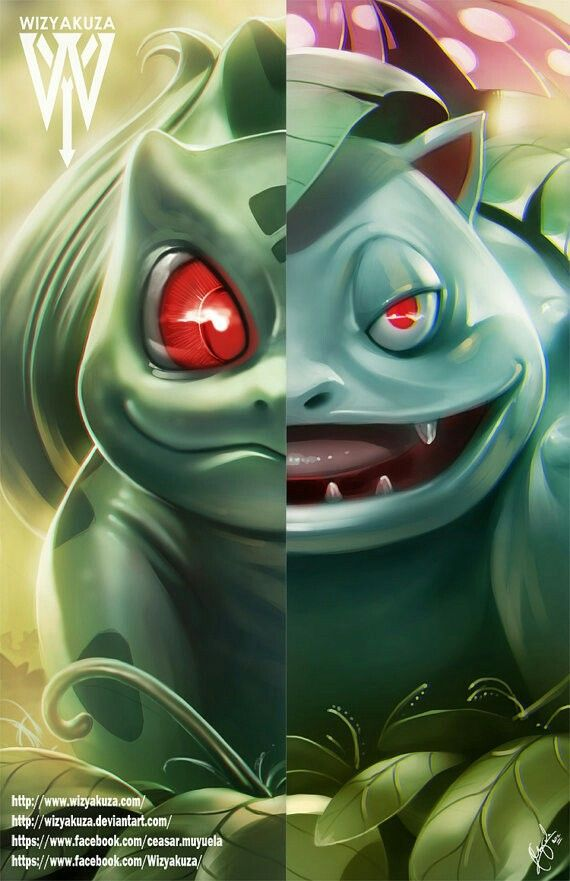 Bulbasaur and Venusaur