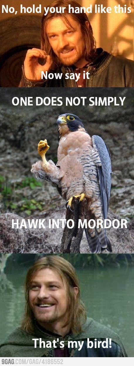 Boromir's pet bird.