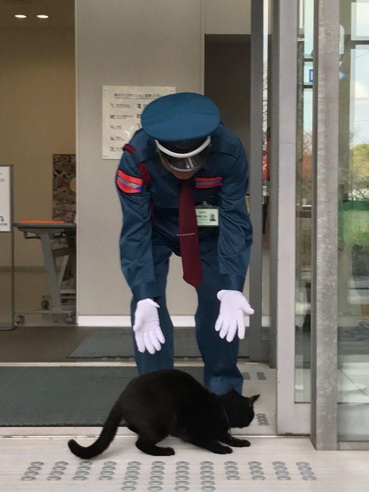 """""""にらみ合いー突撃ー防御ー再突破ー捕獲ーお見送り。本日も近所の黒猫と警備の方の攻防がありました。特別展「招き猫亭コレクションー猫まみれ」なので入館を許可したいところですが、作品保全のため、丁重にお帰りいただきました。展覧会HPはコチラ:https://t.co/LJMNYF9Vog"""""""