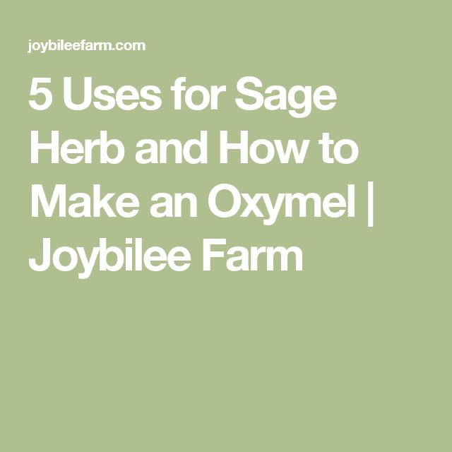 5 Uses for Sage Herb and How to Make an Oxymel | Joybilee Farm