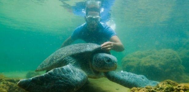 Lama atinge reserva de desova de tartarugas-gigantes no ES
