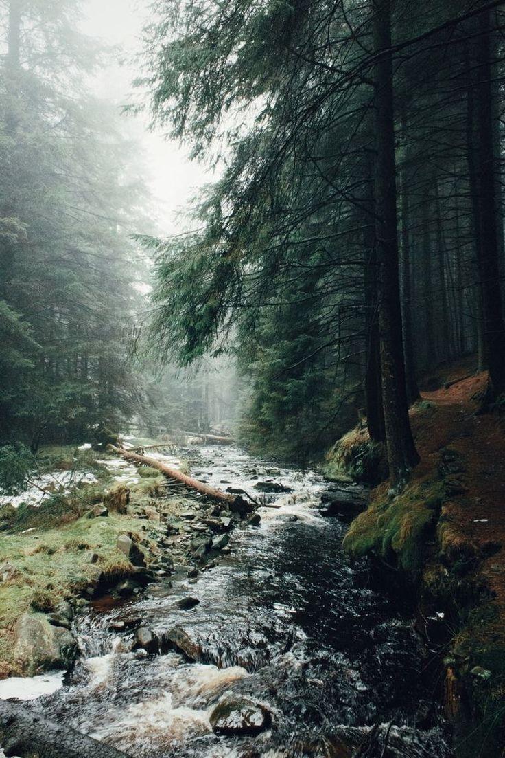 Follow @devonbbeck landscape photography nature wanderlust adventure travel outdoors forest woods beach