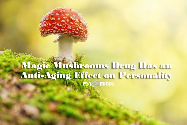 Magic Mushrooms Drug Has an Anti-Aging Effect on Personality - @psyminds17