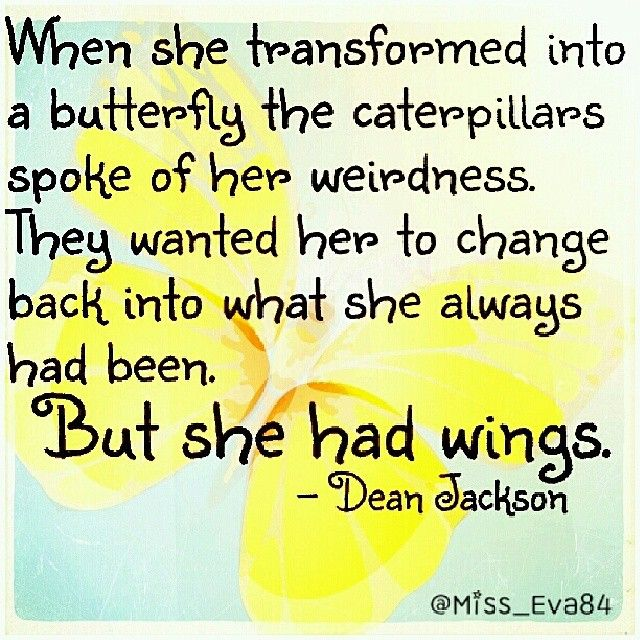 Image result for dean jackson butterfly
