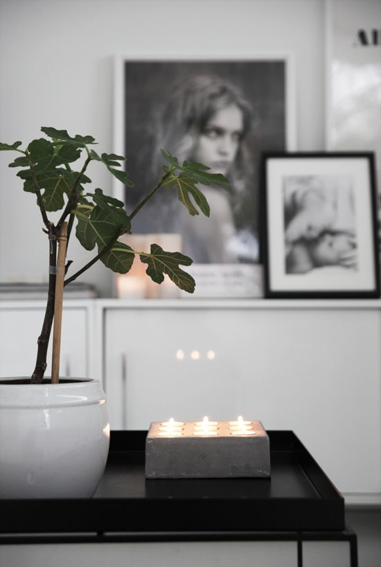 fig tree, candles and paolo roversi poster. from elisabeth heier