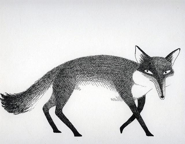 Fox by Relentlesstoil on Flickr