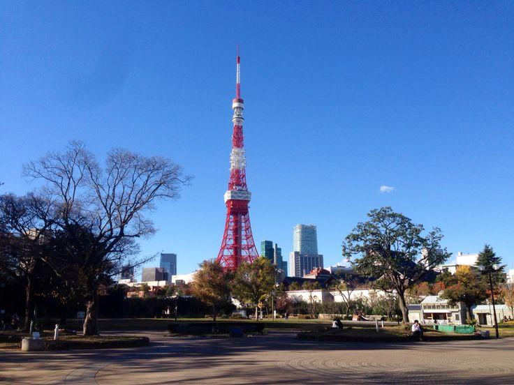 芝公園からの東京タワー。