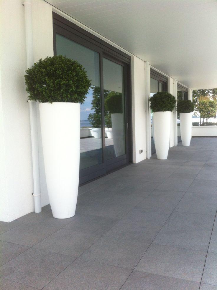 Imposante vazen van 150cm hoog met kunststof buxus planten van 80cm diam.
